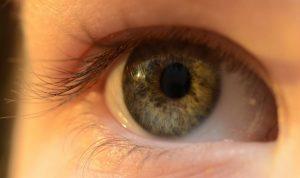 Accent Eye Care Eye 4