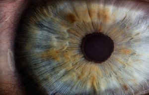 Accent Eye Care Eye
