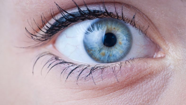 Accent Eye Care Phoenix Ocular Hypertension Treatment | The Quiet Condition