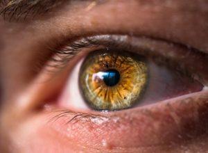 Accent Eye Care Optometrist Phoenix