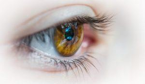 Accent Eye Care patrick-brinksma-382458-unsplash