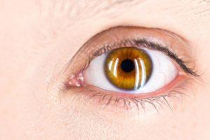 Accent Eye Care salvatore-ventura-K8uQz0zfFbg-unsplash