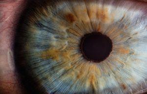Accent Eye Care v2osk-In4XVKhYaiI-unsplash