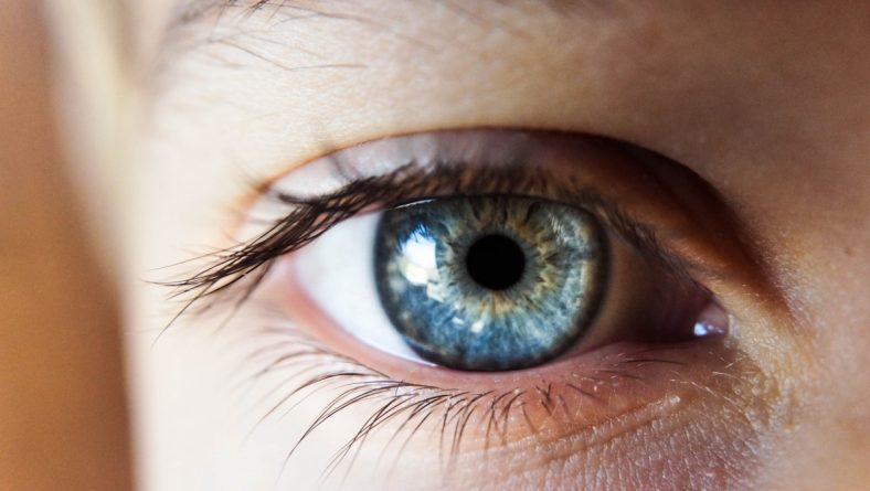 Accent Eye Care Vision Therapy Phoenix   Accent Eye Care